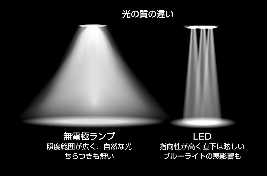LEDとの比較